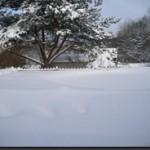 Snö, snö, snö och lite mera snö.