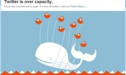 Tweet Tweet! No No!